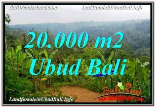 Beautiful PROPERTY 20,000 m2 LAND FOR SALE IN UBUD BALI TJUB678
