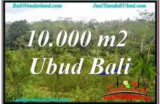 Affordable PROPERTY 10,500 m2 LAND FOR SALE IN UBUD TAMPAK SIRING TJUB681
