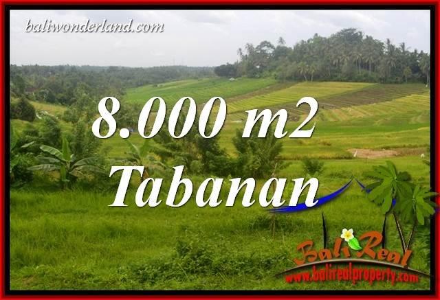 FOR sale 8,000 m2 Land in Tabanan Bali TJTB397
