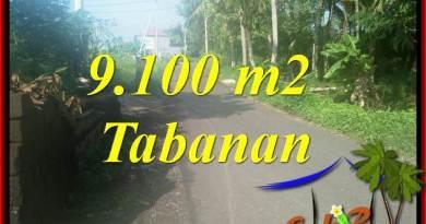 Land sale in Tabanan Kerambitan Bali TJTB407