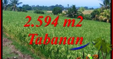 Affordable Property 2,594 m2 Land in Tabanan Selemadeg for sale TJTB414