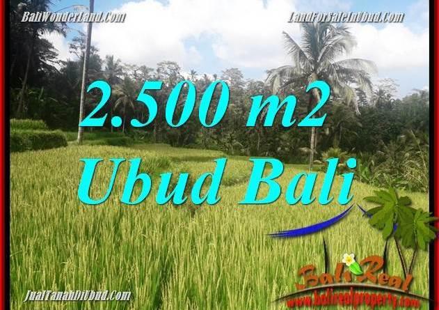 Affordable Land in Ubud for sale TJUB690