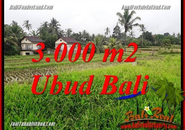 Magnificent Property 3,000 m2 Land in Ubud Tegalalang for sale TJUB698