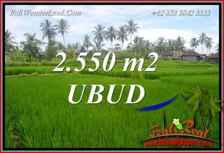 Magnificent 2,550 m2 Land sale in Ubud Bali TJUB700