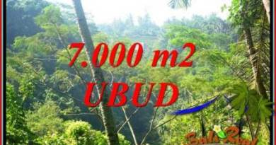 Magnificent 7,000 m2 Land for sale in Ubud Tegalalang TJUB714
