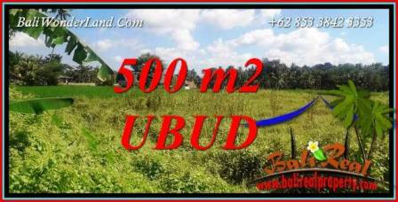 Beautiful Property 500 m2 Land in Sentral Ubud Bali for sale TJUB724