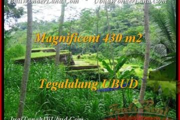 Affordable 430 m2 LAND SALE IN UBUD TJUB466