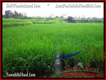 AFFORDABLE LAND IN UBUD BALI FOR SALE