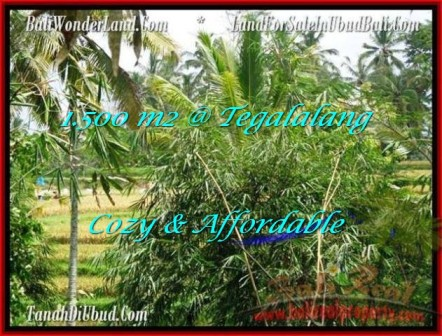 Exotic PROPERTY 1,500 m2 LAND FOR SALE IN Ubud Tegalalang TJUB489