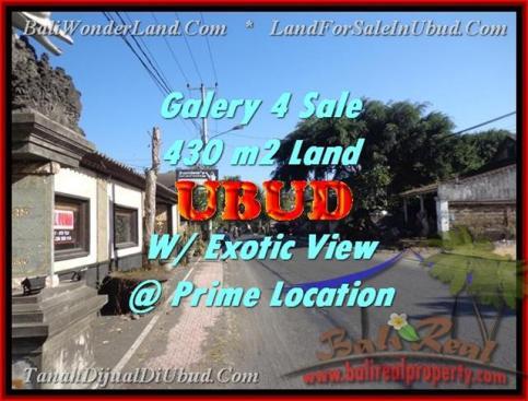 Exotic PROPERTY UBUD BALI 430 m2 LAND FOR SALE TJUB443