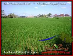 Affordable 6,000 m2 LAND IN UBUD BALI FOR SALE TJUB507