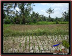 Exotic LAND FOR SALE IN UBUD TJUB531