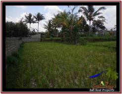 Magnificent LAND IN UBUD FOR SALE TJUB532