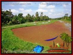 Affordable PROPERTY LAND SALE IN UBUD TJUB552