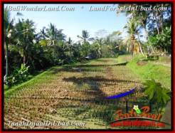 Exotic PROPERTY Ubud Payangan 5,400 m2 LAND FOR SALE TJUB554