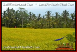 UBUD BALI 350 m2 LAND FOR SALE TJUB540