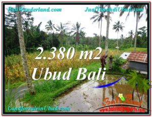 FOR SALE Affordable PROPERTY 2,380 m2 LAND IN UBUD BALI TJUB567