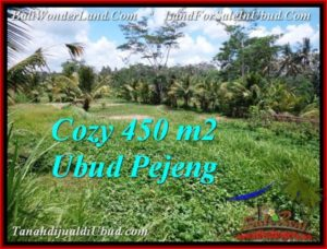 UBUD BALI 450 m2 LAND FOR SALE TJUB535