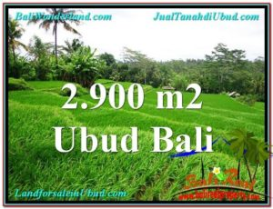 FOR SALE Affordable LAND IN Ubud Tampak Siring BALI TJUB564