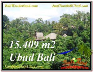 FOR SALE Beautiful 15,490 m2 LAND IN UBUD BALI TJUB568
