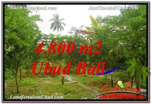 Affordable PROPERTY 4,800 m2 LAND SALE IN Ubud Payangan TJUB571