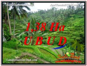 Beautiful PROPERTY LAND IN UBUD FOR SALE TJUB590