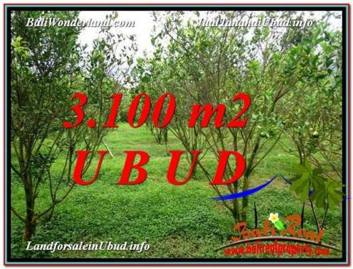Beautiful 3,100 m2 LAND IN Ubud Tegalalang FOR SALE TJUB593