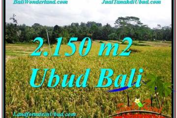 Beautiful PROPERTY LAND SALE IN Ubud Tegalalang BALI TJUB606
