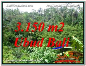 Magnificent PROPERTY UBUD BALI 3,150 m2 LAND FOR SALE TJUB608