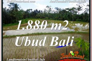Magnificent UBUD BALI 1,880 m2 LAND FOR SALE TJUB613