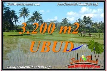 Magnificent 3,200 m2 LAND FOR SALE IN UBUD BALI TJUB628
