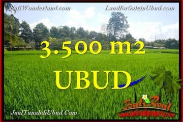 FOR SALE Affordable LAND IN Ubud Gianyar TJUB660