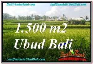 Affordable PROPERTY LAND IN UBUD FOR SALE TJUB667