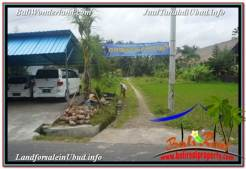 Affordable PROPERTY 4,500 m2 LAND IN SENTRAL UBUD BALI FOR SALE TJUB675