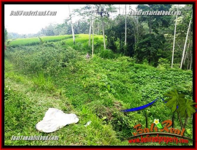 Exotic 5,960 m2 Land for sale in Ubud Payangan TJUB696