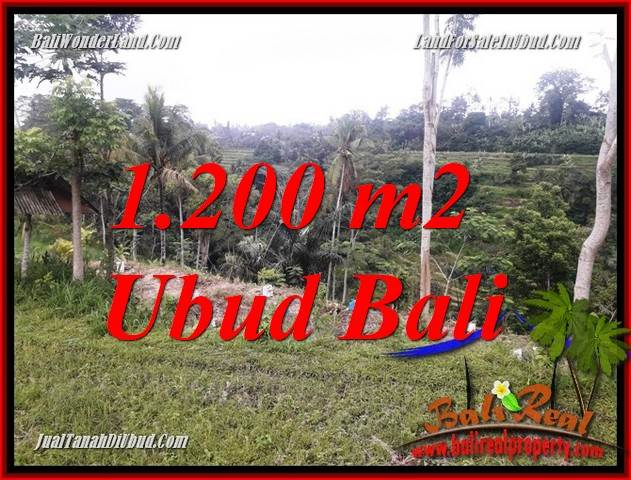 Magnificent Property 1,200 m2 Land in Ubud Tegalalang Bali for sale TJUB699