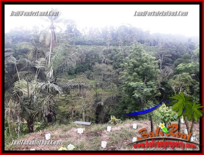 Exotic Property Land in Ubud Bali for sale TJUB699