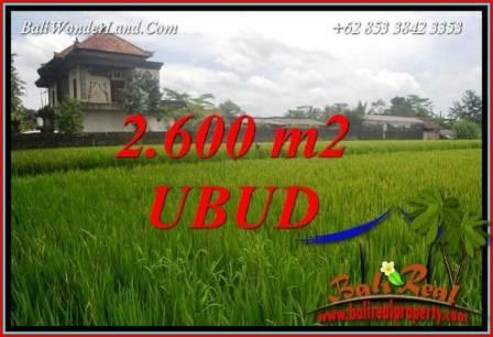 Affordable Property 2,600 m2 Land for sale in Ubud Pejeng TJUB701