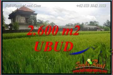 Exotic Property 2,600 m2 Land in Ubud Pejeng for sale TJUB701