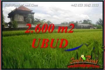 Exotic Property 2,600 m2 Land in Ubud Pejeng for sale TJUB701