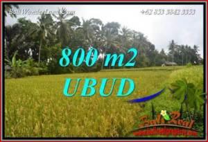 Ubud Bali 800 m2 Land for sale TJUB707