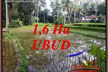 Affordable Land sale in Ubud Tegalalang Bali TJUB735