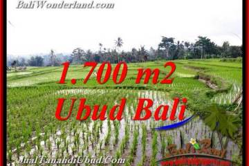 Beautiful PROPERTY 1,700 m2 LAND SALE IN TEGALALANG UBUD TJUB770