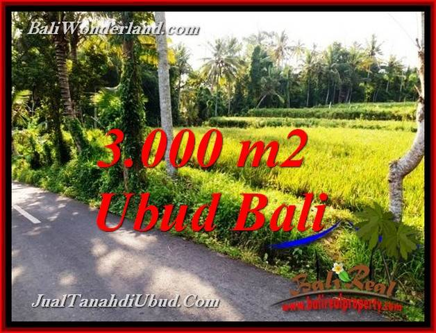 3,000 m2 LAND IN UBUD BALI FOR SALE TJUB771
