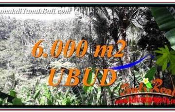 6,000 m2 LAND SALE IN UBUD BALI TJUB750