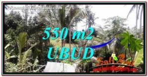 Affordable 550 m2 LAND FOR SALE IN Ubud Pejeng TJUB751