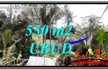 Affordable 550 m2 LAND FOR SALE IN Ubud Pejeng TJUB751