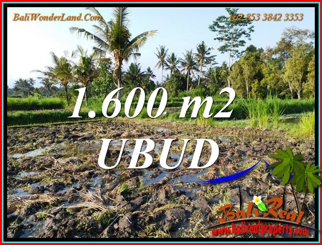 FOR SALE Magnificent PROPERTY 1,600 m2 LAND in Tampaksiring BALI TJUB807