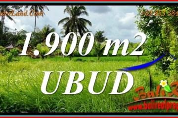 LAND in UBUD BALI for SALE TJUB811