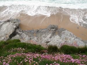 Die Küste Mullions